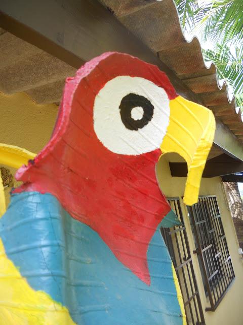 a papagaai 2 ws