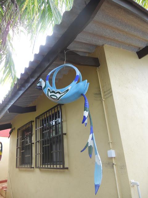 a papagaai blauw 2 ws